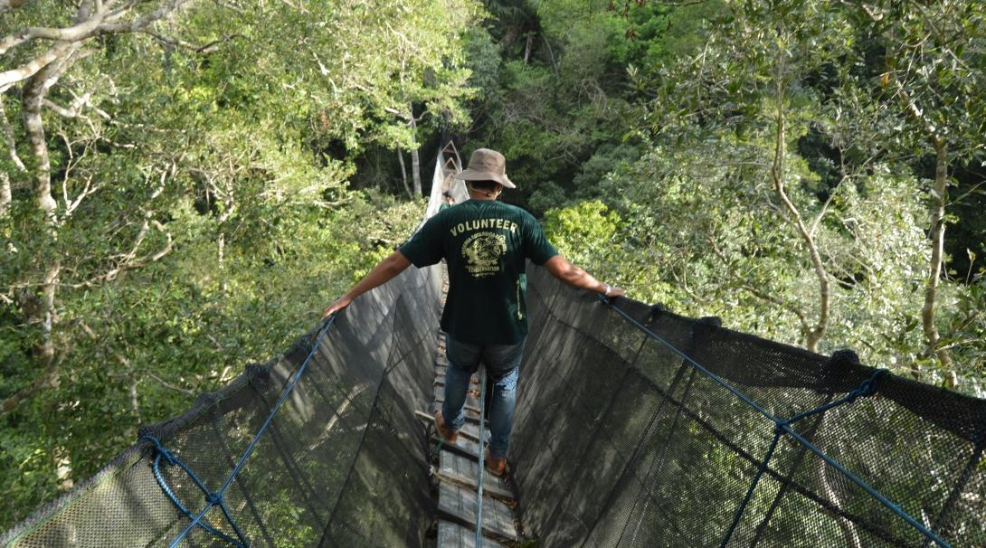 A teenager walks across a tree canopy walkway on our Amazon Rainforest Conservation Project in Peru